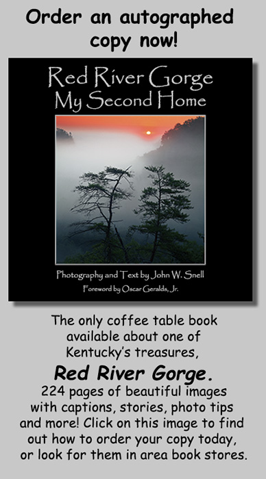 Website promo book front cover