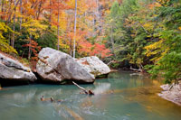 Autumn at Swift Camp Creek